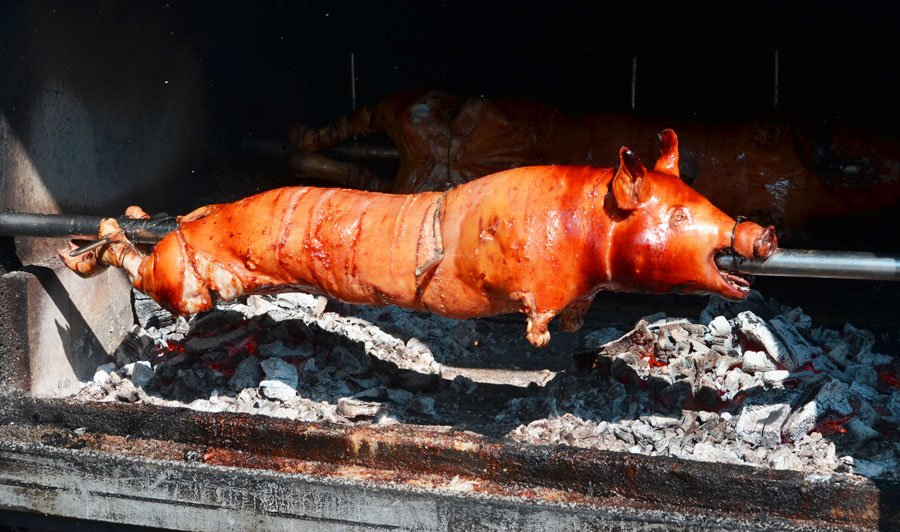 View of a roasted pig