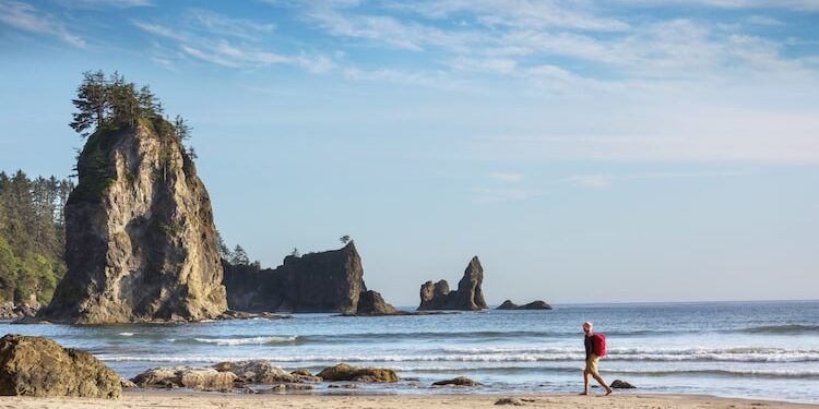 Best Things To Do On Vancouver Island