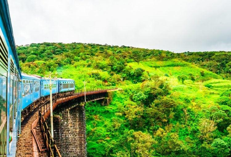 train running through tea fields in Ella Sri Lanka