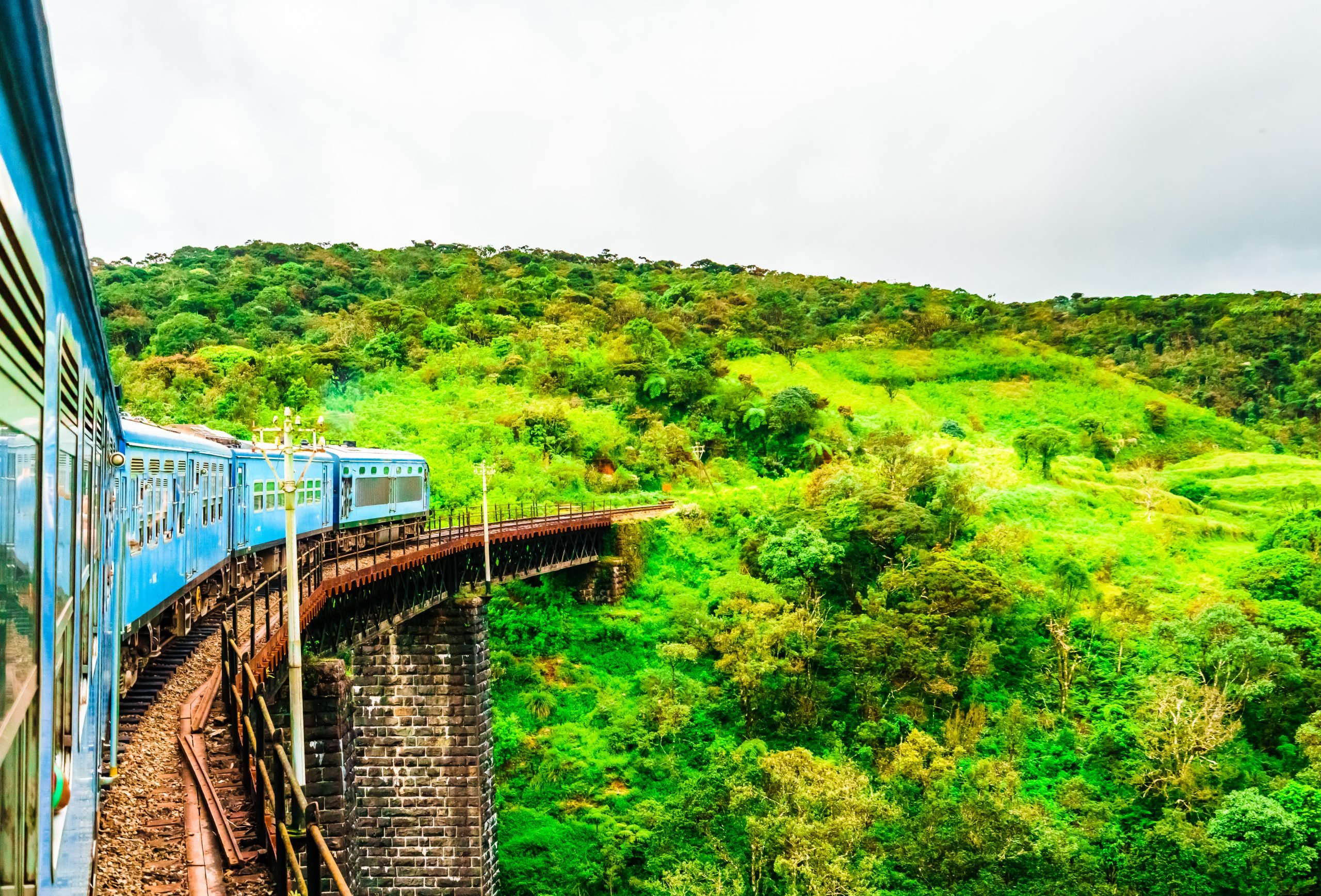 train running through tea fields in Ella Sri Lanka
