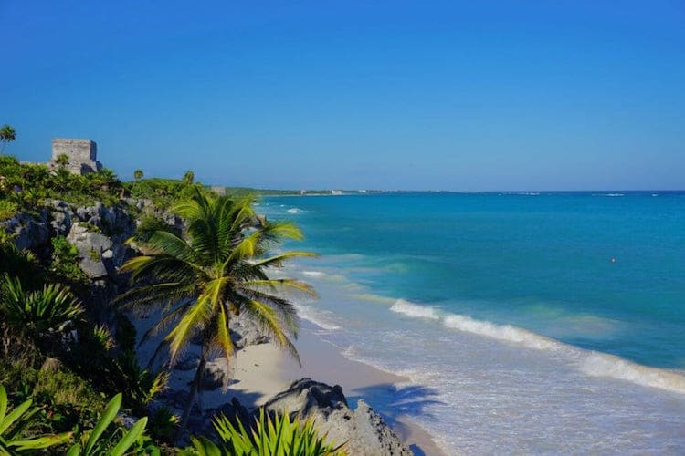 Tulum Ruins and palm trees with the Caribbean sea