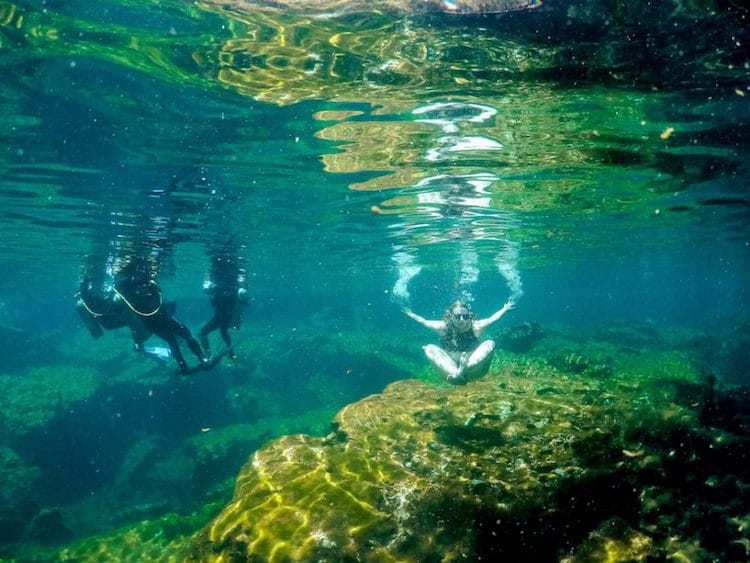 An underwater shot of Taylor and three scuba divers in Jardin Del Eden cenote in Riviera Maya, Mexico