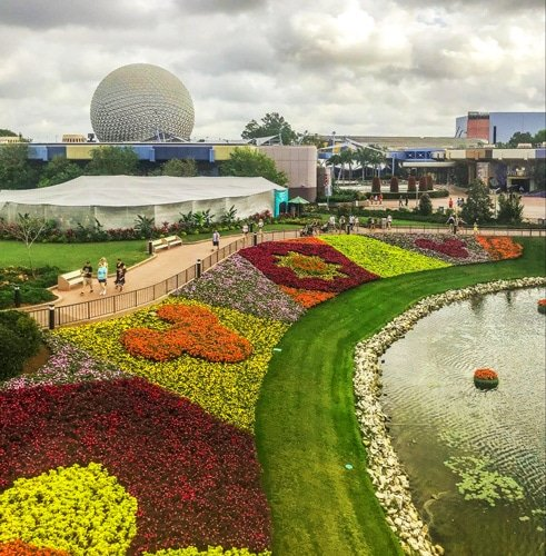 View of flower fields with Disney character figures