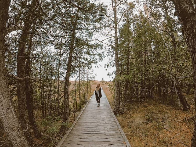 Taylor stands on a boardwalk in Brokenhead Wetlands, Manitoba Canada surrounded by trees