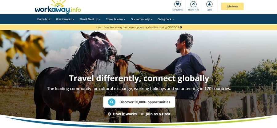 View of the Workaway Homepage