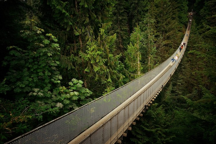 People walk across the Capilano Suspension Bridge in Vancouver,Canada, surrounded by lush greenery