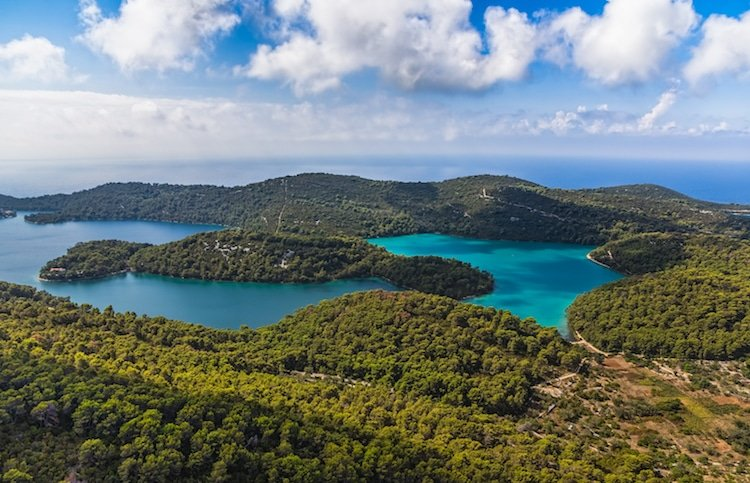 aerial view of islands and old pine forest in Croatia