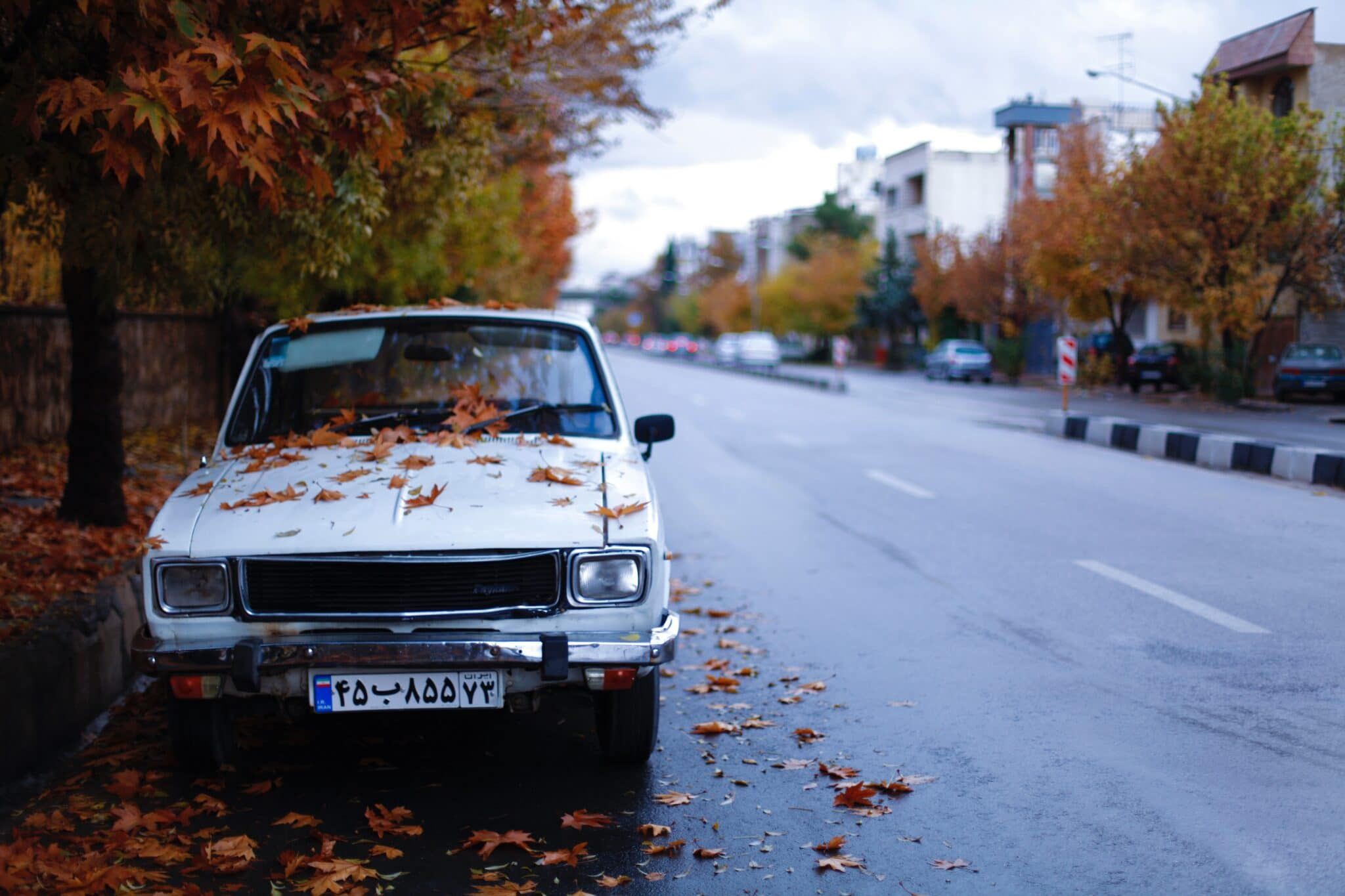 old white car on the street with leaves